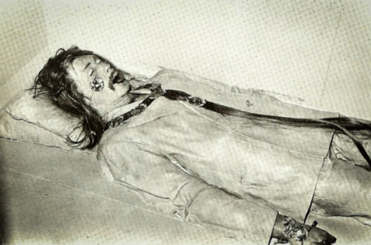 Hippie Died When Narco-Capitalism_Plaid Zebra