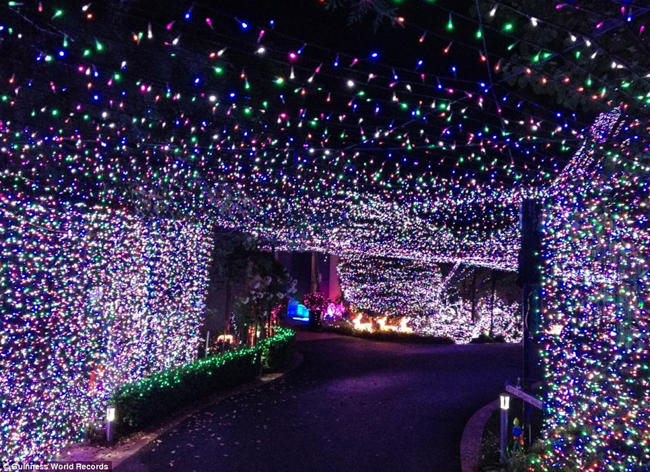 Man breaks record for largest Christmas lights display in the name of  altruism - Man Breaks Record For Largest Christmas Lights Display In The Name