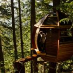 These tree houses will make you want to give up on society and move to the woods (Photos)