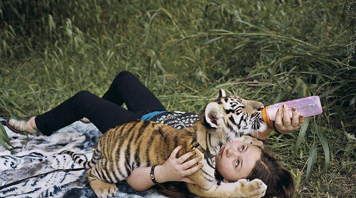 1_Amelia and the Animals