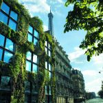 France passes a law requiring new rooftops to be covered with plants or solar panels