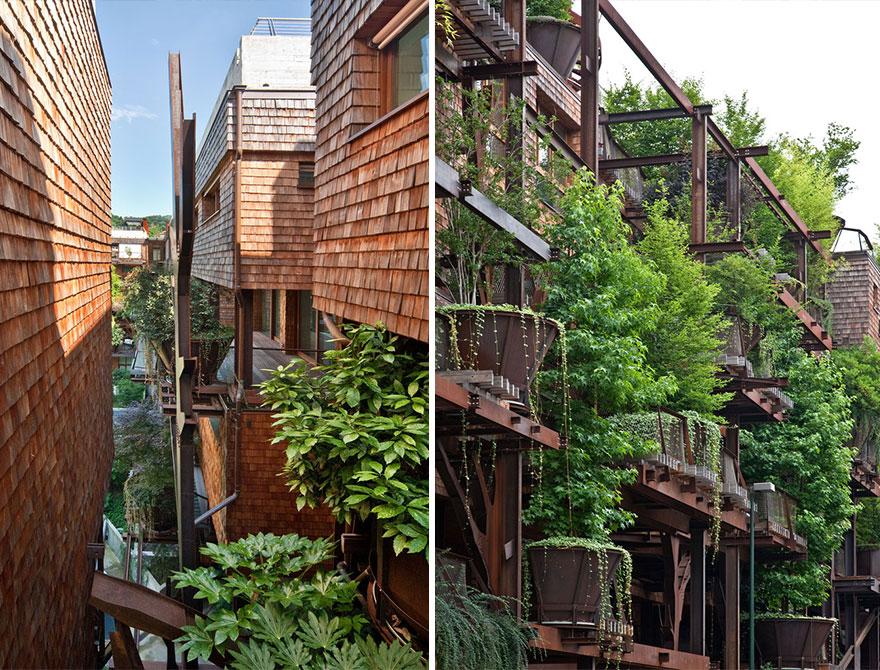 6_urban tree house