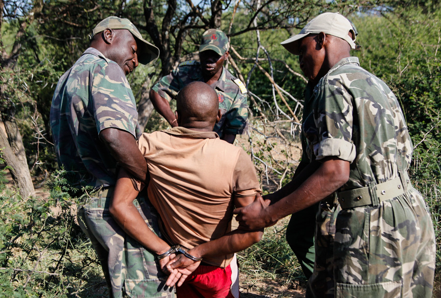 an argument against the poaching of rhinos in south africa Arguments against legalizing the rhino horn trade pt 2 what is the political argument against lifting rhino poaching losses in south africa averaged just 14.