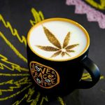 "New cannabis coffee lets drinkers start their day on a ""high note"""