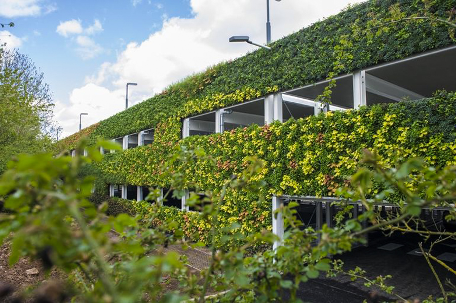Europe S Largest Living Wall Contains 97 000 Plants