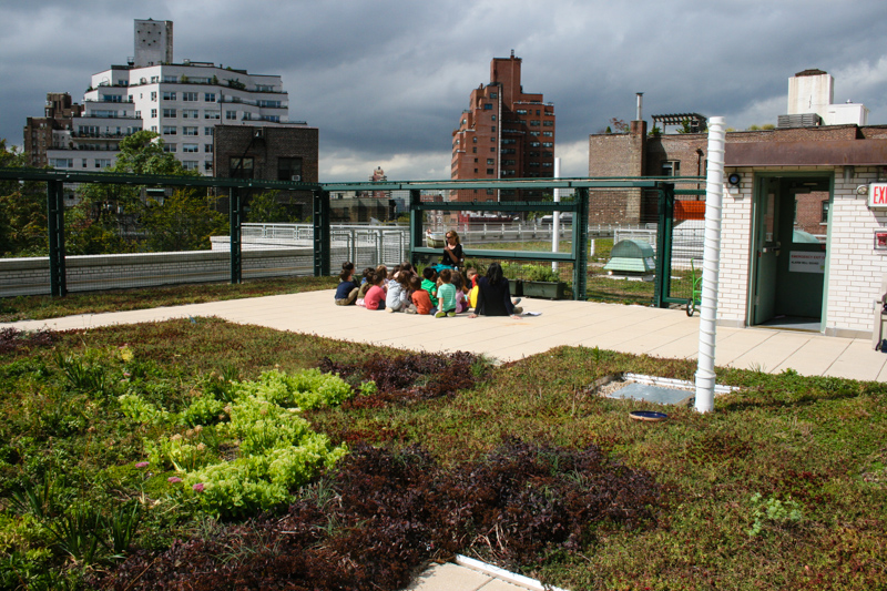 2_solar green roofs NYC