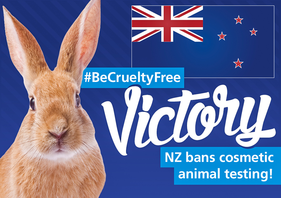 5_animal testing new zealand