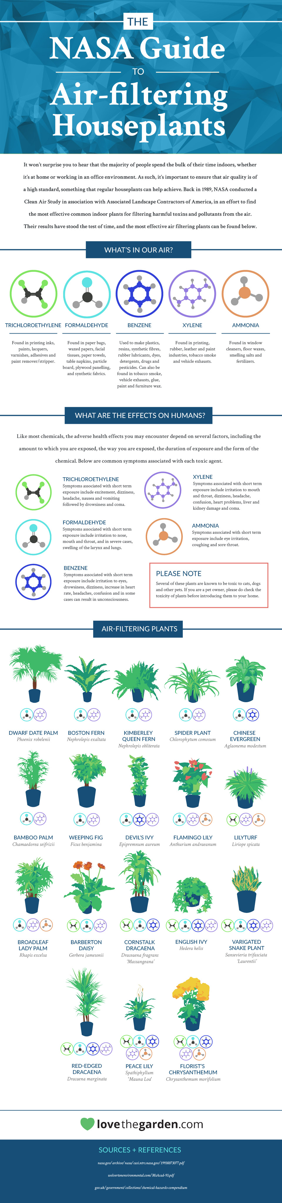 Nasa 39 s guide to the best air filtering plants to have in for Air filtering plants