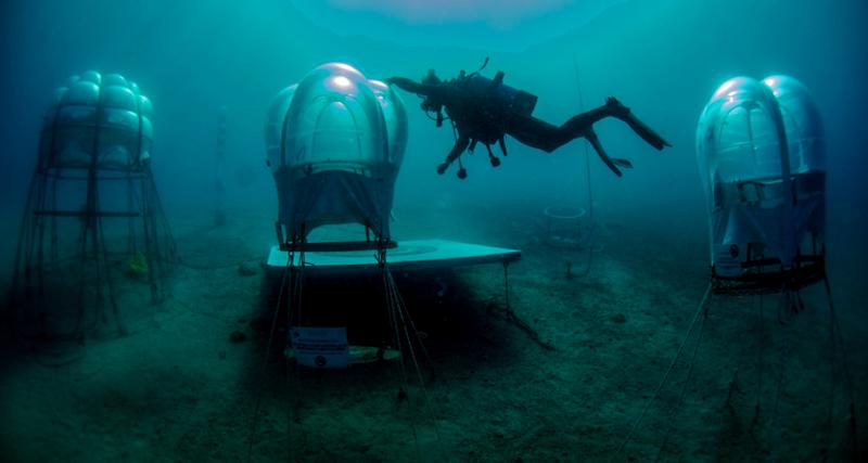 1_underwater greenhouse