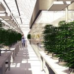 Colorado's first weedery will revolutionize the cannabis industry