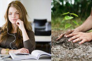 1_planting trees