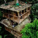 This tree house community in Costa Rica is the new frontier in sustainable living