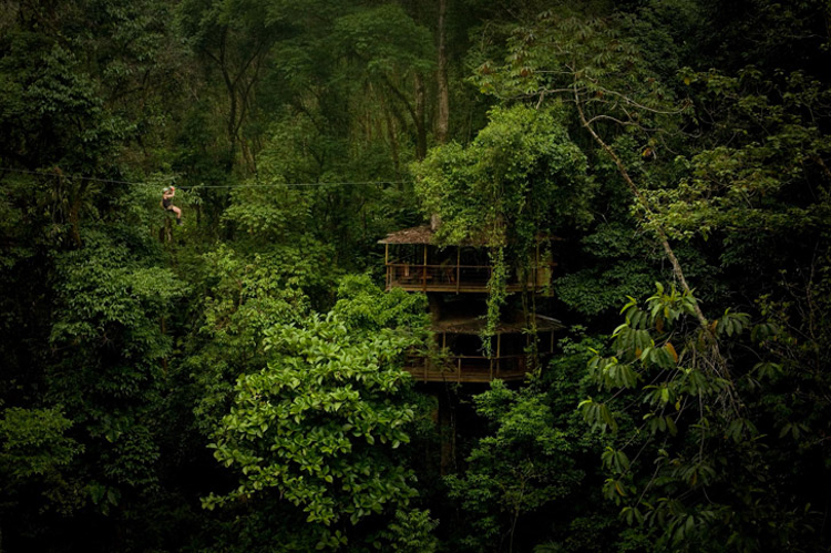 2_tree house community in Costa Rica
