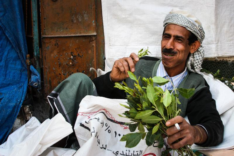 4_plant draining Yemen economy