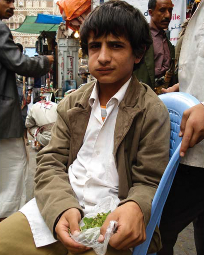 6_plant draining Yemen economy