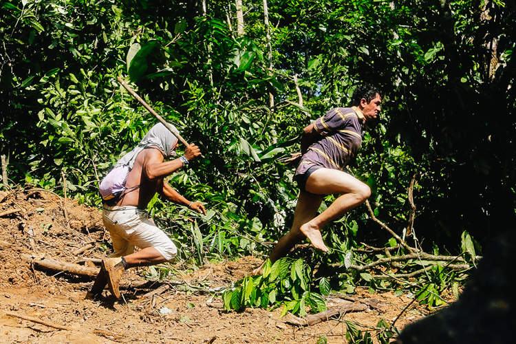 4_Brazil's forest villagers Illegal Loggers