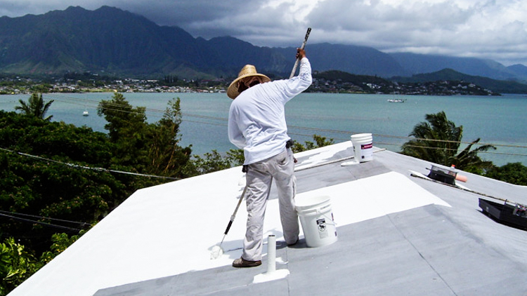 5_White Roof Climate Change