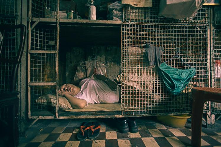 Dog Sleeping Cage Uk