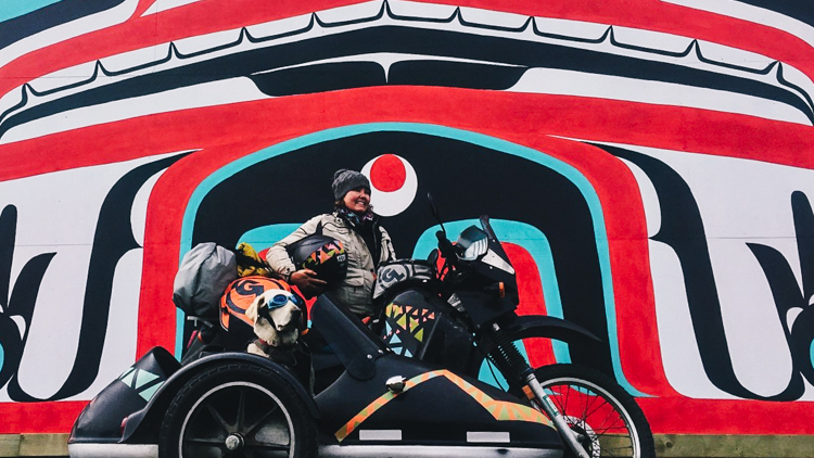6_golden retriever motorcycle trip