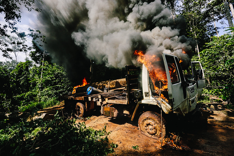 7_Brazil's forest villagers Illegal Loggers