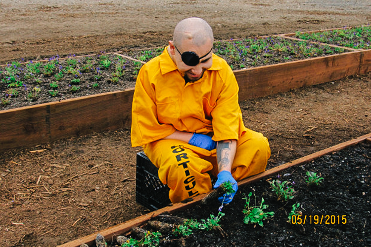 9_Sustainability programs in prisons