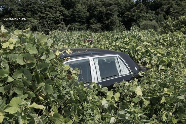 10_Fukushima's radioactive-rubble nature