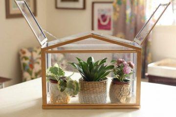 1_IKEA's mini-greenhouse