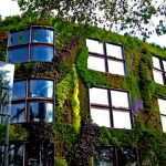 Moss-growing concrete absorbs CO2, insulates and is also a vertical garden