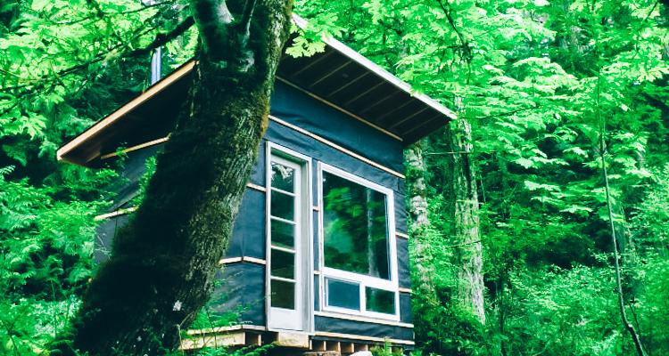 1_micro-cabin.jpg