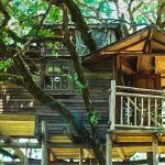 The treehouse lifestyle is for adventurers, nature lovers, the wild and peace seeking