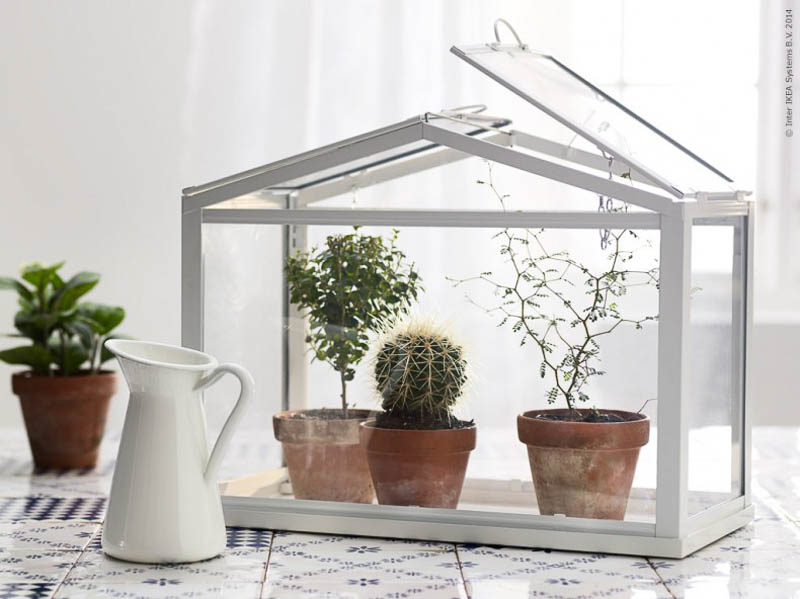 ikea s mini greenhouse lets you grow your favourite plants ikea s miniature greenhouse lets anyone create their own
