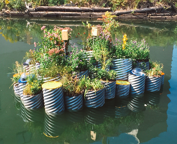 6_polluted waterway tiny floating garden