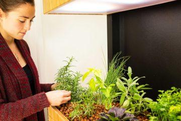 0_self-sustaining eco-garden Smart phone