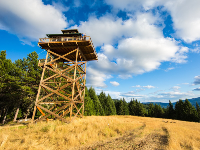 11_fire lookout_Oregon Forest