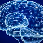 This new way of growing brain cells may cure Alzheimer's, Autism and other mental illnesses.