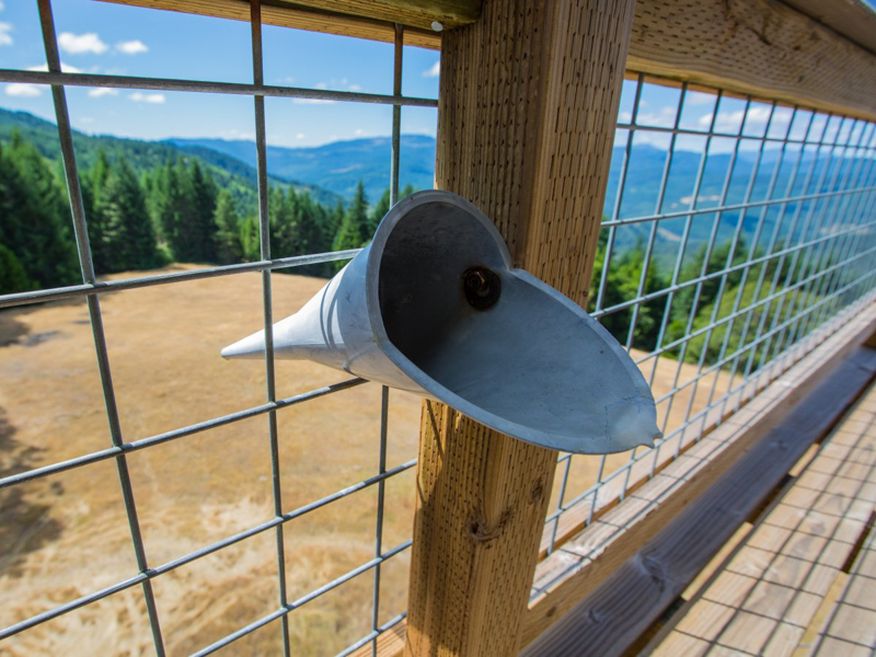 8_fire lookout_Oregon Forest
