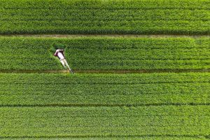 0_10 best drone photos of 2015