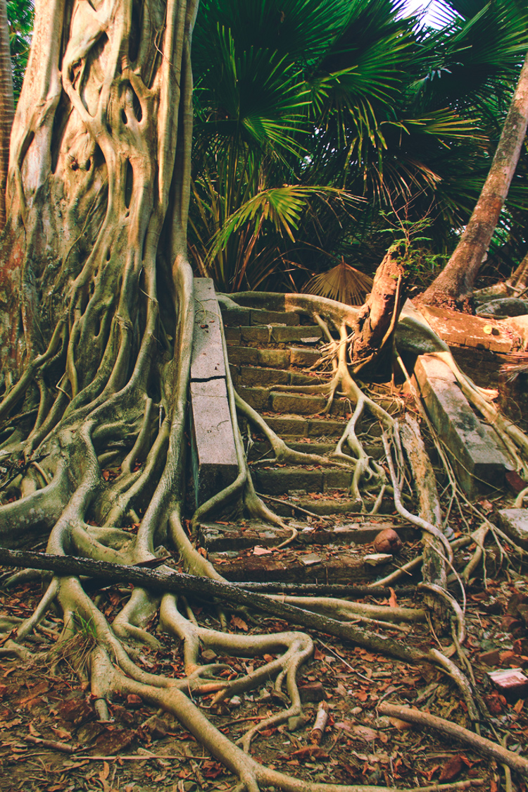 1_The Jungle Book_abandoned Island