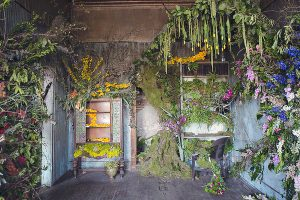 1_abandoned house flower sanctuary