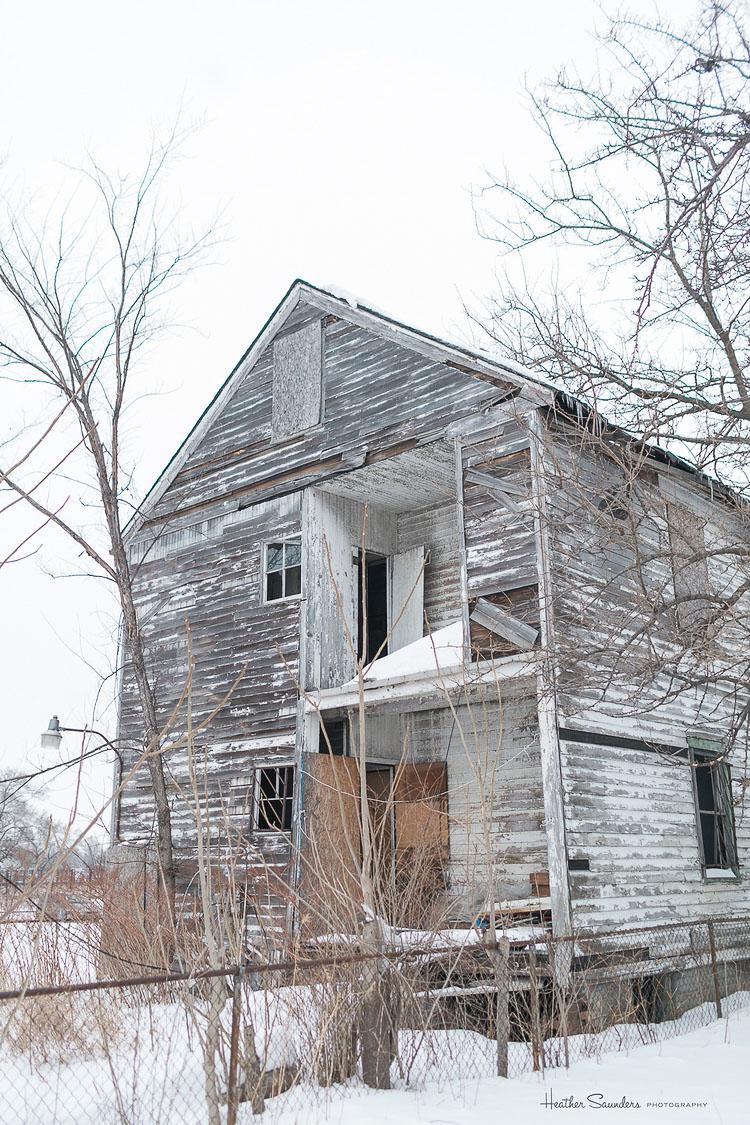 2_abandoned house flower sanctuary