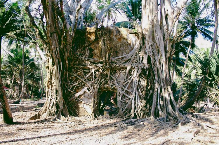 4_The Jungle Book_abandoned Island