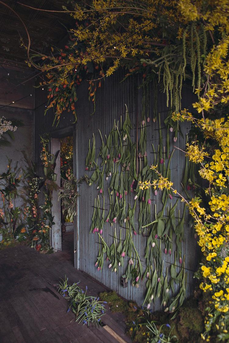 4_abandoned house flower sanctuary