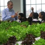 This Bronx teacher has changed the lives of inner-city kids by helping them grow their own food
