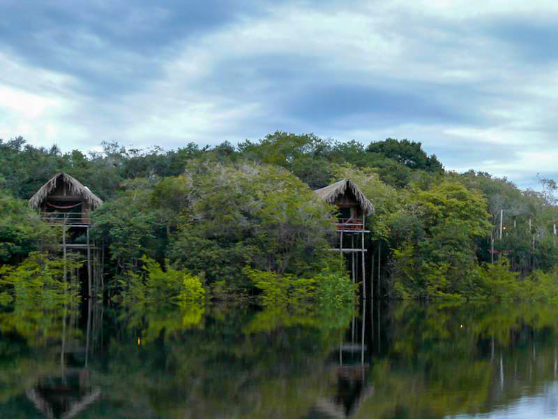 4_Korowai Tree houses
