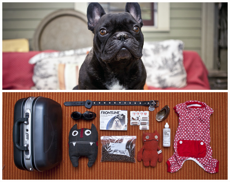5_contents of people's bags