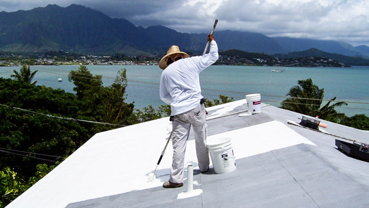 3_the white roof project