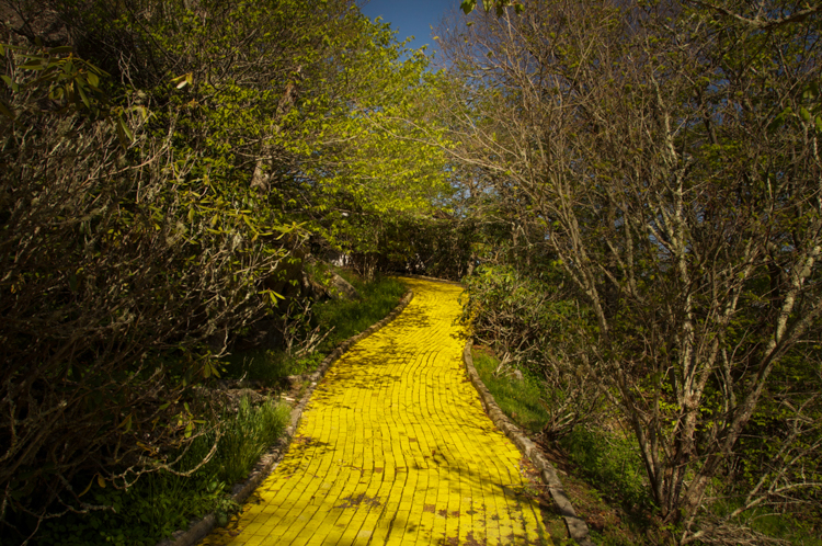 4_abandoned Wizard of Oz theme park