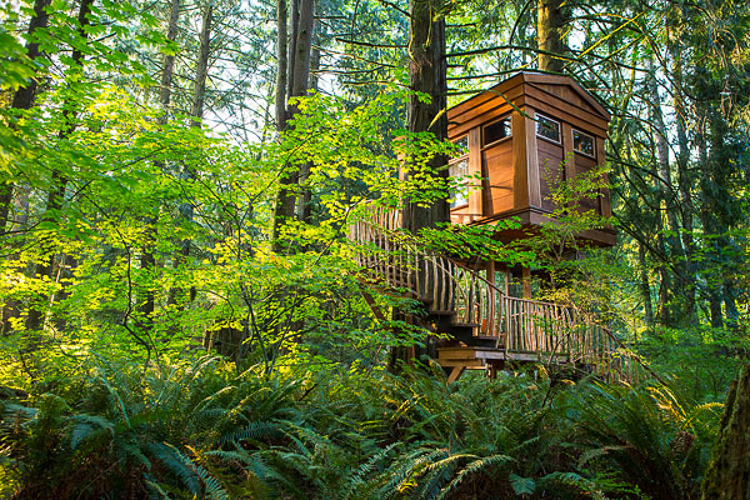 Treehouse hotels article image 2