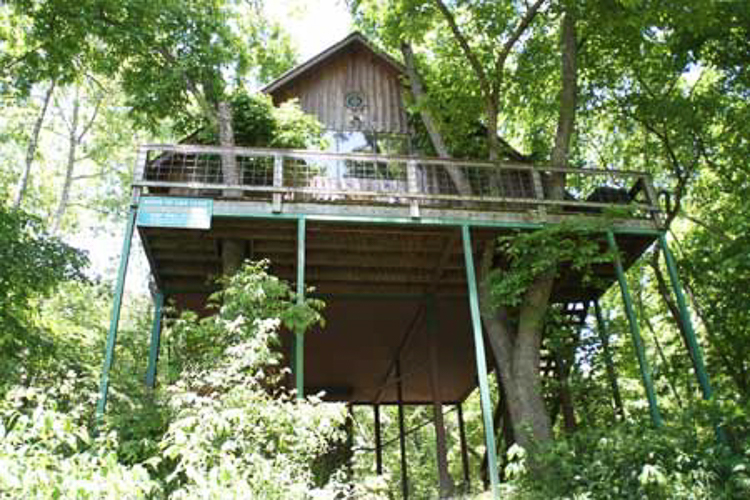 Treehouse hotels article image 3