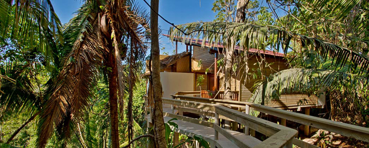 Treehouse hotels article image 8